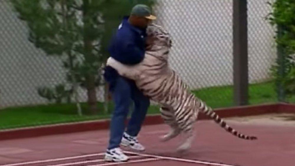 Mike Tyson ringt mit seinem Tiger
