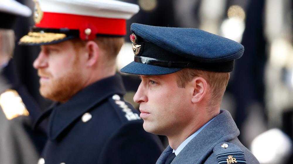 Prinz Harry und Prinz William starren nach vorne
