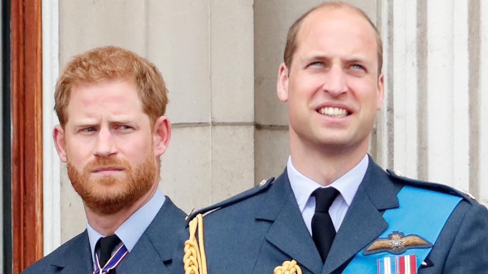 Prinz Harry und Prinz William bei einer Veranstaltung