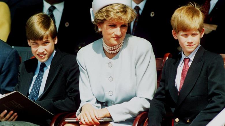 Prinzessin Diana Söhne