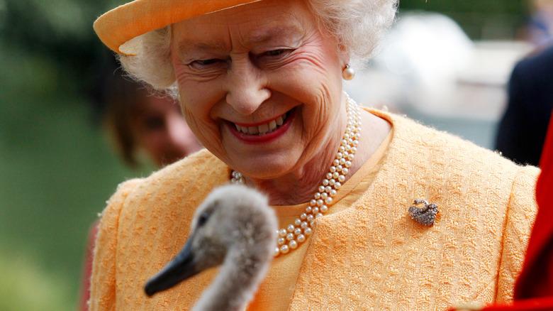 Königin Elizabeth II. mit einem Schwan