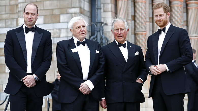 Prinz Harry mit Prinz William und Prinz Charles