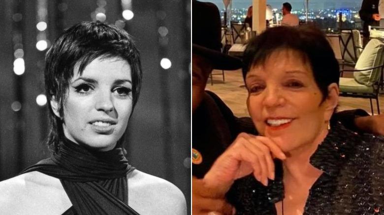 Junge und alte Liza Minnelli Bildspaltung